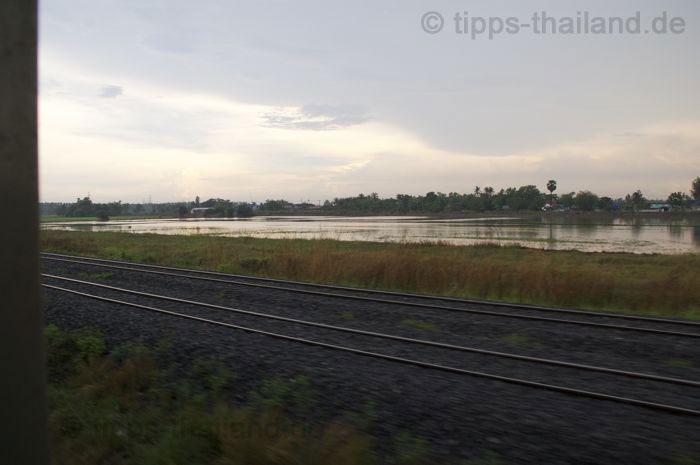Reisfelder auf der Fahrt nach Ayutthaya