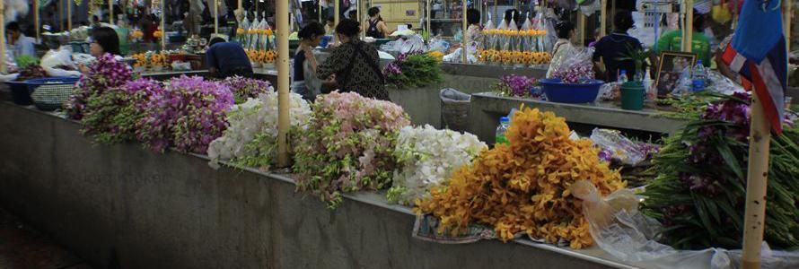 ThailandBlumenmarkt